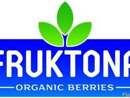 Услуги шоковой заморозки ягод, фруктов и овощей Fruktona