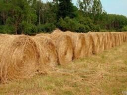 Услуги заготовки сена покос травы сенаж подбор валков