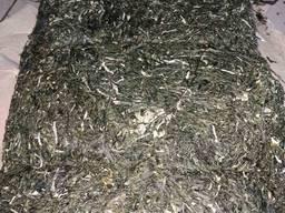 Вакамэ зеленая бурая водоросль чука ундария перистая