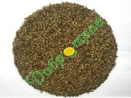 Валеріани насіння (лат. Valeriana officinalis seed)