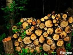 Продаются дрова чурками и колотые