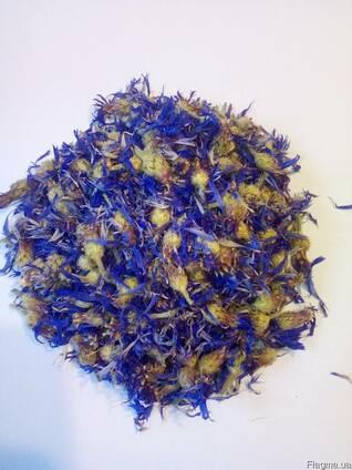 Василёк(цвет)