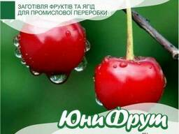 Вишню. урожай 2018 от 200 кг