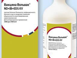 Вольвак ND IB EDS KV, инактиват, 1 тыс доз
