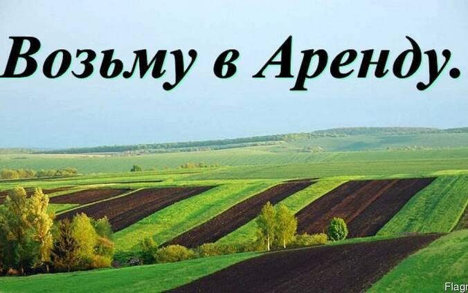 Возьму в аренду сельхоз земли в Царичанском районе