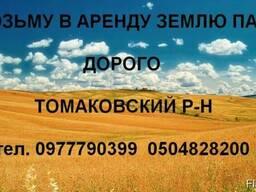 Возьму в аренду землю паи Томаковка район