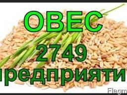 Все Производители Овса - скидка - более 50%