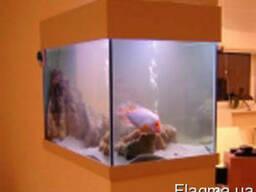 Вырезка стекол для аквариума, террариума