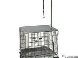 Выставочный комплексTigers Show 3:1 перевозка груминг собак
