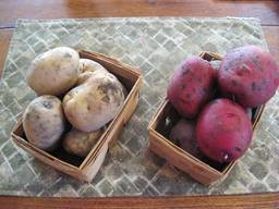 White and Red Potatoes