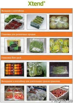 Xtend, упаковка длительного хранения фруктов/овощей/зелени