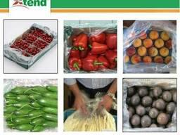 Xtend упаковка для фруктов, ягод, овощей и зелени