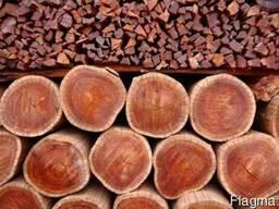 Яблоня, Дуб в чурках на дрова на уголь