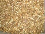 Ядро ореха грецкого - фото 2