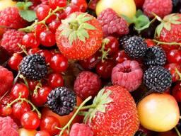 Ягоды , фрукты