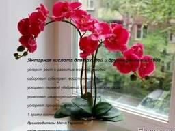 Янтарная кислота для орхидей и других растений 46 г