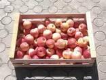 Ящик для яблок - фото 2