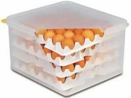 Ящик для яиц , 8 контейнеров