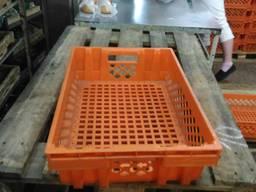 Ящик пластиковый для хранения Тара. Контейнер