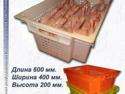 Ящики для кур