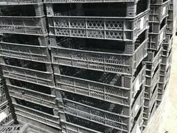 Ящики для малины/смородины