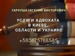 Юридическая помощь в Киеве. Адвокат в Киеве.