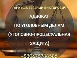 Юридические услуги в Киеве. Адвокат в Киеве.