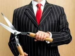 Юридические услуги в сфере налогового права