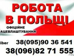 Загранпаспорт. Виза в Польшу-бесплатное трудоустройство