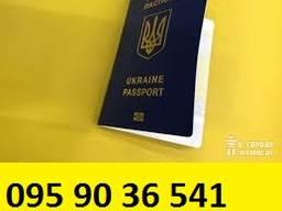 Загранпаспорт. Виза в Польшу. Страхование