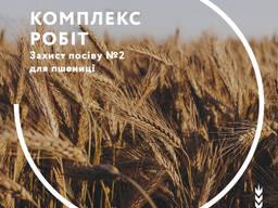 Захист посіву № 2 для пшениці