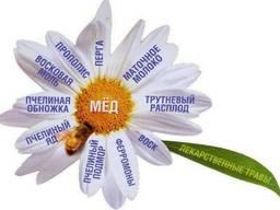 Заказ пчело-фитокомплексов Фитаписвит и Тенториум