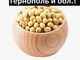 Куплю Сою Тернополь Украина - фото 3