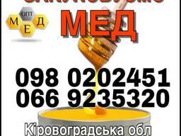 Закупка оптом подсолнечного МЕДА. Кировоградская обл.