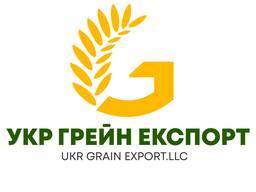 Закуповуємо Зернові на постійній основі