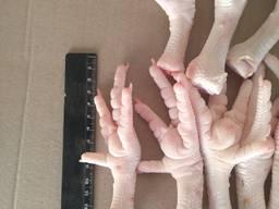 Замороженная куриные ноги класса А на экспорт - фото 2