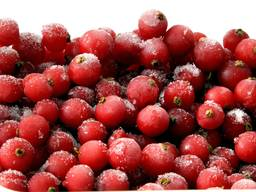 Замороженные фрукты, ягоды и овощи - Оптом