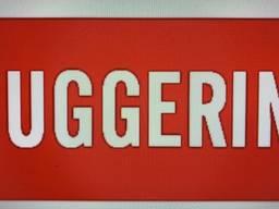 Запчастини на двигун Ruggerini