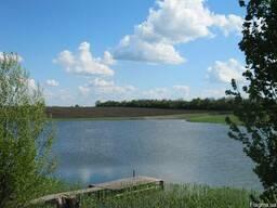 Зарыбленный ставок 16 га, Днепропетровская область