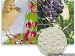 Защитная сетка от птиц для сада, огорода, деревьев, Киев,