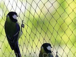 Защитная сетка от птиц, капроновая
