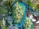 Защитная сеточка - рукав для винограда - фото 1
