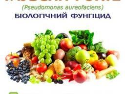 Засіб від хвороб рослин - Гаубсин FORTE ENZIM Agro