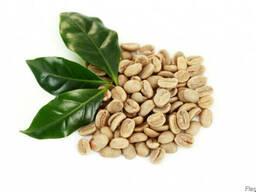 Зеленый кофе (необжаренный) Arabica Cameroon
