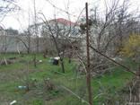 Земельный участок 6 сот. (госакт) в СТ «Яблонька». - фото 2