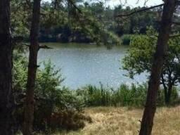 Земельный участок в лесу 8 Га, где имеются 4 озера. Одесса