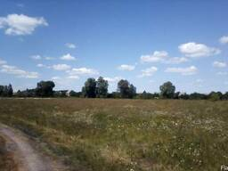 Продам 37 соток село Сулимовка, Бориспольский район