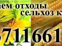 Зерноотход и проблемные сельхоз культуры!