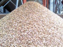 Куплю зерновые отходы