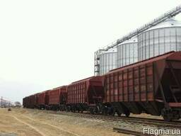 Жд перевозка зерновых грузов